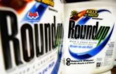 USGS Study Finds Roundup in 75% of Air and Soil Samples - http://www.thewestwire.com/roundup-usgs-study/ A new study from the U.S. Geological Survey, reveals that Roundup herbicide (aka glyphosate) and its still-toxic degradation byproduct AMPA were found in over 75% of the air and rain samples tested from Mississippi in 2007.