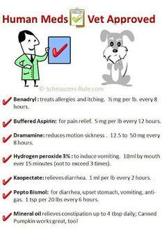 Human Meds Vet Approved
