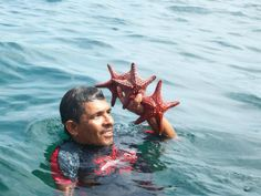 The starfish were abundant.  It's amazing how the color changes after they die.  I didn't know starfish were so red!