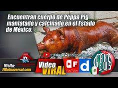 Encuentran cuerpo de Peppa Pig maniatado y calcinado en el Estado de Méx...