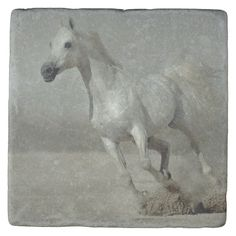Shop Wild Horse Running free Stone Coaster created by Personalize it with photos & text or purchase as is! Stone Coasters, White Coasters, Horse Ranch, Custom Coasters, Wild And Free, Wild Horses, Craftsman Style, White Elephant Gifts, Funny Cute