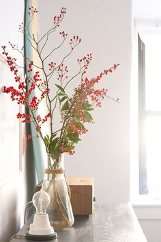 berry branches in a tiny apartment | reading my tea leaves | Schoolhouse Electric ion lamp
