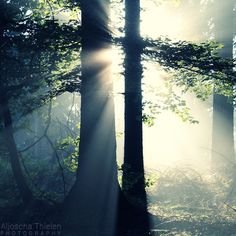 Impact of light by Aljoscha Thielen Beautiful World, Beautiful Places, Beautiful Pictures, Yoga, Down South, Chiaroscuro, Photoshop Photography, Walking In Nature, Mother Earth