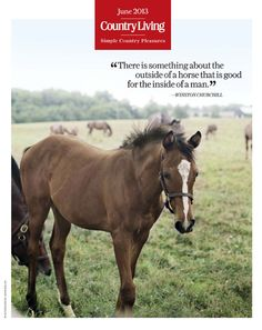 """""""There is something about the outside of a horse that is good for the inside of a man."""" - Winston Churchill"""
