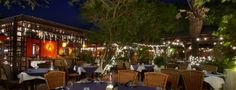 Madame Janette's, Aruba. Favorite restaurant ever!