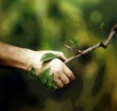 trato con la naturaleza