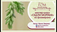 "Pro.FOM/Про.ФОМ/ Мастер-класс ""Седум Моргана"".  Ирина Зверева - YouTube Crepe Paper, Tissue Paper, Paper Cutting Patterns, Paper Flowers, Bouquet, Place Card Holders, How To Make, Crafts, Embroidery"