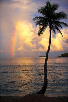 Namale Resort, Savusavu, Fiji Islands