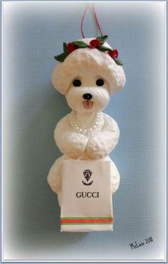 Bichon with luxury taste - Gucci!