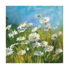 iCanvas Summer Field II Gallery Wrapped Canvas Art Print by Danhui Nai Framed Art Prints, Fine Art Prints, Canvas Prints, Art Floral, Floral Wall, Floral Style, Watercolor Flowers, Watercolor Paintings, Pastel Paintings