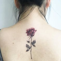 Rose stem tattoo, flower tattoo back, tatoo rose, red rose tattoos, rose . Rose Stem Tattoo, Tatoo Rose, Rose Tattoo Meaning, Flower Tattoo Back, Rose Back Tattoos, Red Rose Tattoos, Rose Tattoo Placement, Single Rose Tattoos, Rose Tattoos For Women