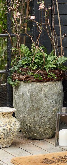 Barnacle Egg Pot