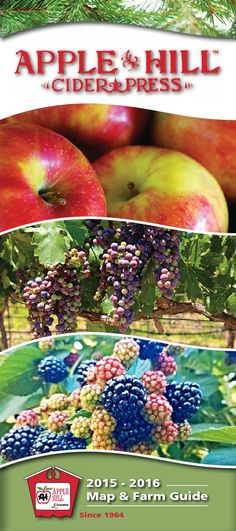 ISSUU - 2015 Apple Hill Cider Press by Apple Hill® Growers Association