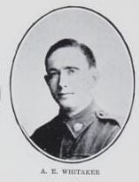 WHITAKER,   Albert   Edward.   Private,   No.  4615.   Born   and   educated   at   Maryborough.   The   son   of   Charles   and   Mary   Ann   Whitaker,   of   Churchill   Street,   Maryborough.