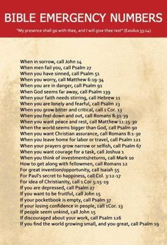 Do you ever feel as though you need a 911 list of Bible verses to help encourage, inspire, console or challenge you in your daily life? I found the perfect list to take note of when I am in need of making that 911 call to the word of God -My Bible. Bible Quotes, Bible Verses, Me Quotes, Hurt Quotes, Scripture Mastery, Daily Quotes, Famous Quotes, Funny Quotes, The Words