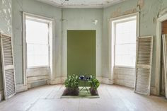 9 New Paint Colors from Farrow & Ball: A Color Field Trip with Zio and Sons - Remodelista Farrow Ball, Victorian Terrace Interior, Green Wall Color, Holi Festival Of Colours, Victorian Living Room, Living Room Update, Living Rooms, New Paint Colors, Old School House