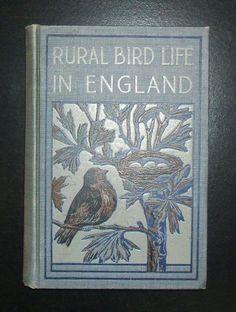 essays on biodiversity