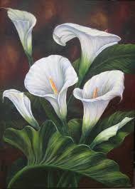 Resultado de imagem para alcatraz flor pintura