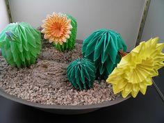 Origami Cactus Garden!!!!