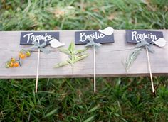 cute garden signs