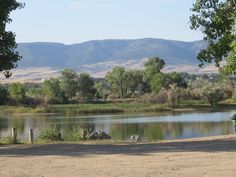 This image captures the pond near the eastside off-leash dog park as well as Casper Mountain in the background, Casper, Wyoming