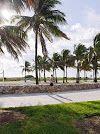 Tipy Miami Miami, Places, Lugares