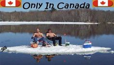 Google Image Result for http://www.swanparadise.com/image-files/canadians.jpg