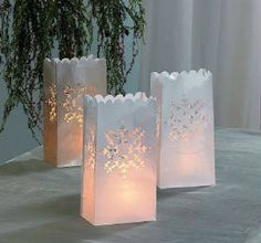 Winter Luminarys Luminary Bags 12pcs 9 99 Wedding Decorations Silver