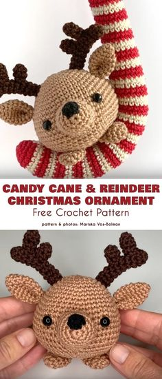 Candy Cane Free Crochet Patterns Candy Cane Poem, Candy Cane Image, Candy Cane Reindeer, Candy Cane Ornament, Candy Cane Wreath, Reindeer Christmas, Reindeer Food, Candy Canes, Christmas Ornaments
