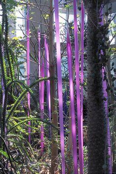 Dale Chilhuly Japanese Glass Forest.  Atlanta Botanical Garden  Atlanta, Georgia.