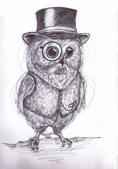 Day 3 Of My 50 Challenge And I Present You With Sir Owlet