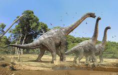 "Brachiosaurus altithorax (""arm lizard"")  Chordata/Reptilia/Sauropodomorpha/Titanosauriformes/Brachiosauridae    Late Jurassic (154 - 153 Ma)  65 ft in length and 45 tons"
