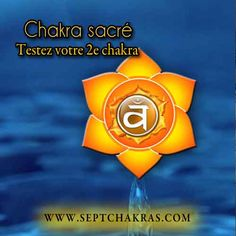Testez votre 2e chakra Le chakra sacré est situé près du nombril, ce chakra, de couleur orange, estcelui qui gère nos émotions, notre autonomie et notre libido. Il porte aussi le nom de Chakra du sexe car il contrôle nos comportementspar rapport à la sexualité, au plaisir et à la reproduction. Il est le second chakra à se mettre en mouvement lorsque le chakra racine,1er chakra, a accompli un cycle de sept ans, #chakraracine #chakraracinesuractif #chakrasacrééquilibré La Reproduction, Libido, Cycle, Chakras, Back Pain, Heart Chakra, Belly Button, Orange Color, Behavior