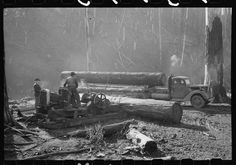 14. The Donkey Engine At Work A Donkey Engine was a form of steam engine. Here you can see it in operation in Tillamook County, Oregon. Workers used the Donkey Engine to make sure that logs that they had felled and treated could be placed onto a truck and transported to their eventual destination in