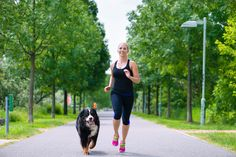 5 Benefits Of Exercising With Your Dog