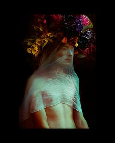 DARK PARADISE by Elizaveta Porodina  http://www.flickr.com/photos/elizavetap/6837295519/