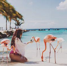 Renaissance Island in Aruba