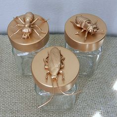 Cool glass jars with bug lids. So weird but would be cool in a guest bath. Spray paint plastic bugs from Dollar Tree and glue to lids.