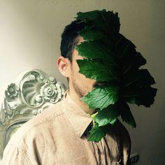 Ya preparando LEVANTAMIENDO DEL HOMBRE ÁRBOL, para PERPENDICULAR Transformance y Magia para en Brasil.  #art #arts #arte #arteacción #artvenezuelam #folha #homemarvore #arvore #vida #politica #hombrearbol #artprocess #artproject #hoja #naturaleza #natura #artnature #artlife #instagram