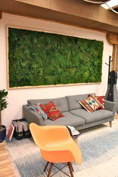 Living Wall, Vertical Wall, Planted Design, San Francisco, Amanda Goldberg, Moss, Moss Wall, Preserved, Maintenance Free, Rent, Rental, Bringing The Outdoors In, LivingWall , LivingWalls, VerticalGarden, Maintenance Free, Moss, GreenDesign, Interior Design, Rent Me, SF Design, Lush, GreenWall, Mosses, Mood Moss, Green Beauty, Green Walls, Orange Chair, SW Pillow, Framed Art