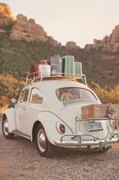 """""""We weren't going to get married or have children. We were going to buy a Volkswagon and travel around the world."""" Sounds like somewhat of a dream really.."""