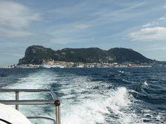 Vanessa Wester: #Gibraltar Dolphins