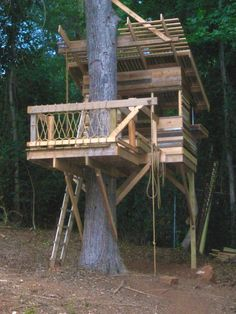 treehouse design ideas pictures remodel and decor page 10 - Treehouse Plans 12x8