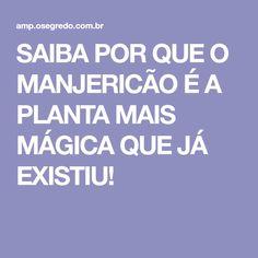 SAIBA POR QUE O MANJERICÃO É A PLANTA MAIS MÁGICA QUE JÁ EXISTIU!