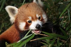 """How's the job? You were always so smart."" 