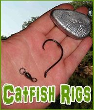 The two most popular rigs to catch catfish are the rig and the slip rig also known as the carolina rig. Although both of these rigs can be fished in some of the same situations in certain conditions, each also has its own unique presantaion. Catfish Rigs, Catfish Bait, Catfish Fishing, Fishing Rigs, Crappie Fishing, Fishing Bait, Fishing Lures, Fishing Stuff, Fishing Knots