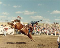"Bud Pauley, of Miles City, Montana, not quite aboard ""Challenger"" at the ""Home of Champions Rodeo"" in Sentinel Butte, North Dakota.  The horse, sired by a Gray Wolf and a Timberline/Snowflake mare in 1981, was the 1987 PRCA Saddle Bronc of the Year."