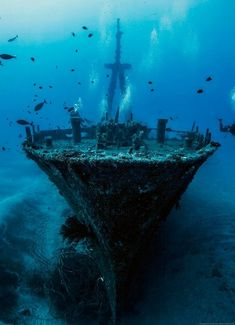 Diving on the wreck of the Hai Siang, near Réunion Island. 2015 National Geographic Photo Contest - The Atlantic Under The Water, Under The Sea, Underwater Photos, Underwater World, Underwater Photography, Underwater Shipwreck, Fishing Photography, Underwater Sculpture, Photography Guide