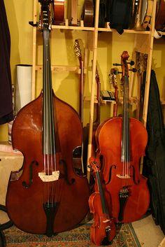 Bass, Cello and Violin