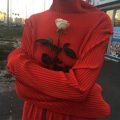 By: @yulyazalesskaya #rose (på/i Stockholm, Sweden)